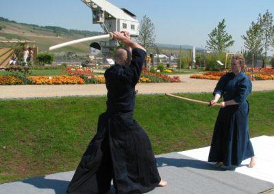 Landesgartenschau Bingen 2008